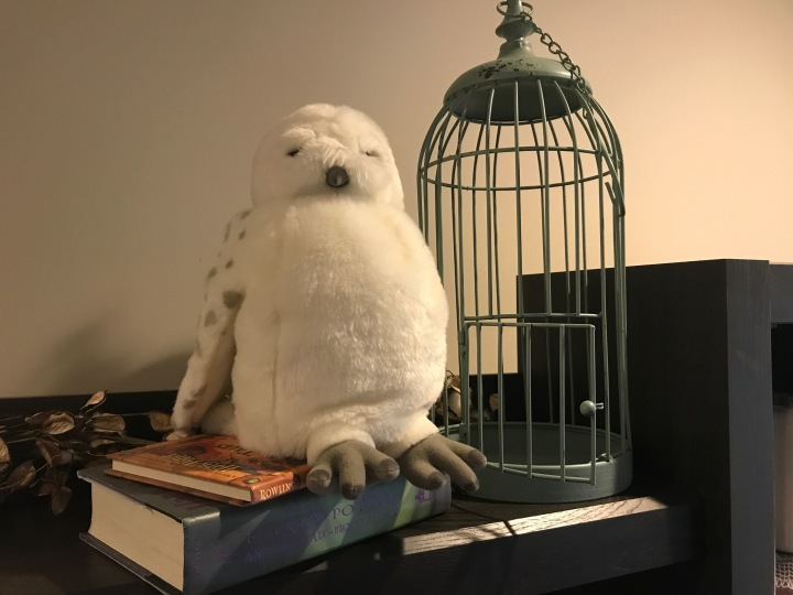 hedwig-cage-decoration