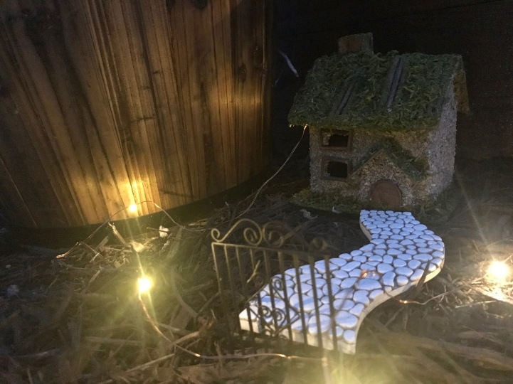 fairy-garden-at-night